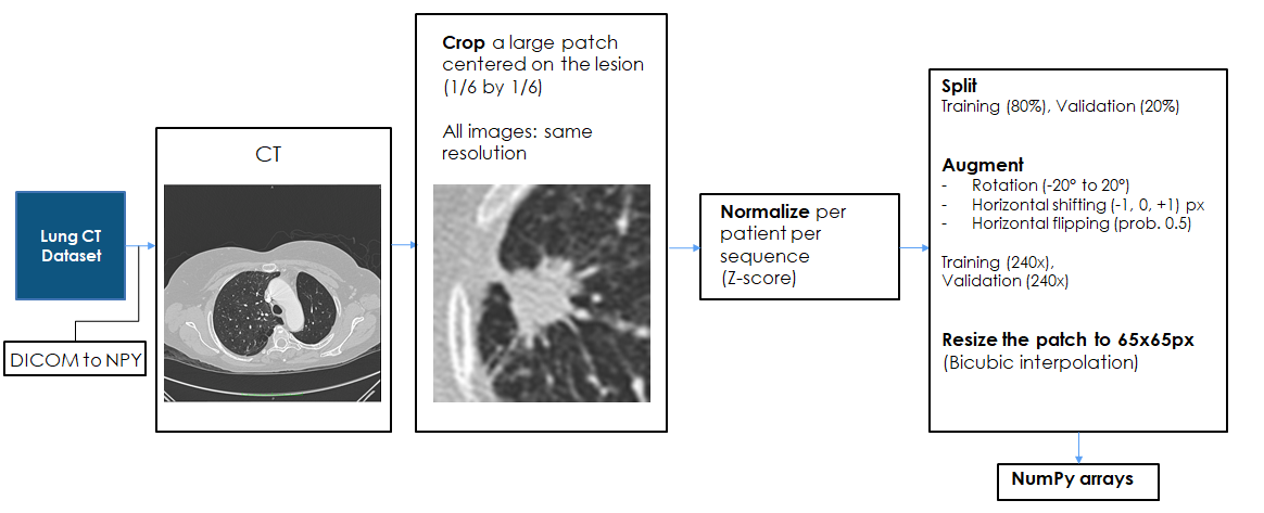 Lung CT Challenge processing